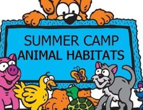 "School Summer Camp 2019 — ""Habitats Around The World"""